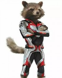 Avengers Endgame Rocket Raccoon Quantum Suit Jacket